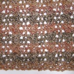 No Beginning Chain Quick Shell and Lace Blanket